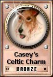 Casey's Celtic Charm Award: Bronze